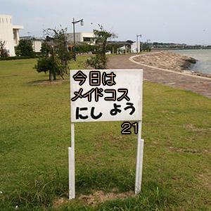 Neta_041_cocolog_oekaki_2010_11_05_